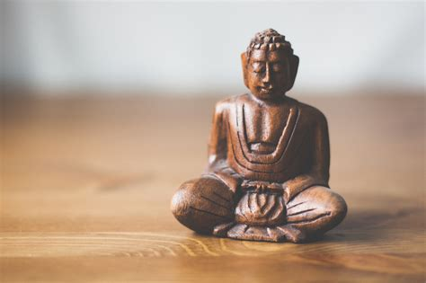 buddhist meditation tapping into the for radical change and
