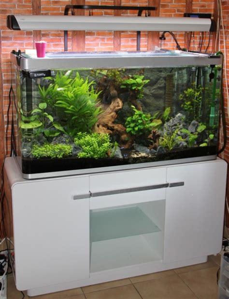 aquarium osaka 320 images