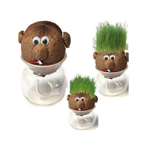 mini potted plants mini diy magic grass plant pot grass doll indoor