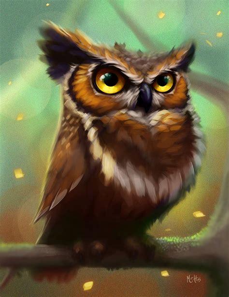 lwork owl 25 best ideas about owl illustration on owl