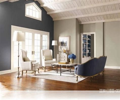 paint color ideas for living room accent wall marvelous accent wall living room images designs accent