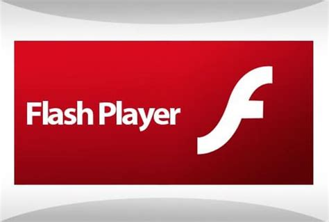 adobe flash player how to update adobe flash player on pc or mac neurogadget
