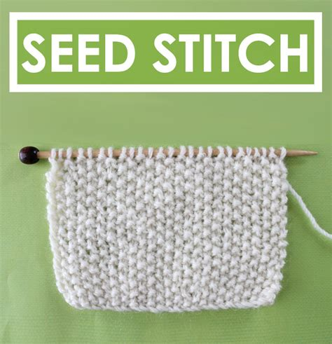 seed stitch knitting in the how to knit the seed stitch pattern studio knit