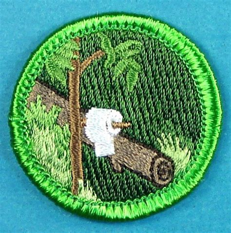 woodworking merit badge boy scout woodworking merit badge projects image mag