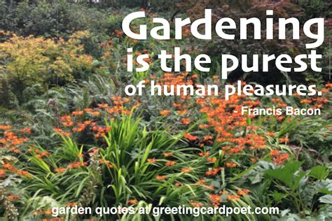 quotes on gardens and flowers garden quotes and gardening sayings flowers and plants