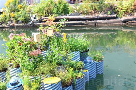 Garden Of Nyc Closing Growonus Floating Water Filtering Garden Pops Up On The
