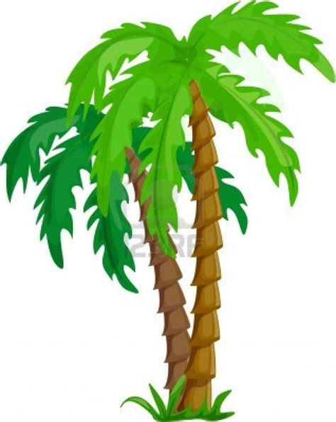 tropical tree tropical tree clipart clipground