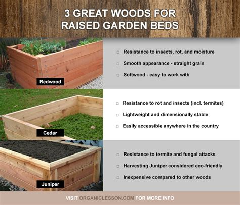 best soil for raised vegetable garden beds best wood and lumber for building raised garden beds