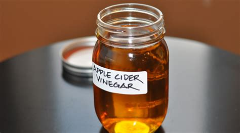 how to make apple cider vinegar how to make apple cider vinegar at home drenchfit