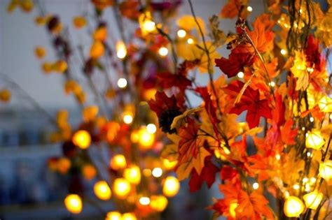 autumn string lights festive fall lighting ideas louie lighting