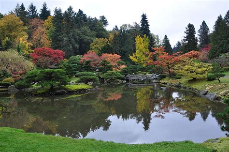 botanical gardens seattle wa seattle japanese garden
