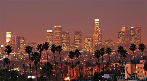los angeles where in los angeles should you live in your 20 s la