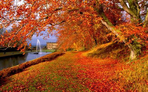 for fall free autumn wallpaper backgrounds wallpaper cave