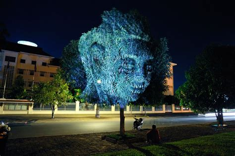 projection tree projection mapping on trees by photographer clement briend