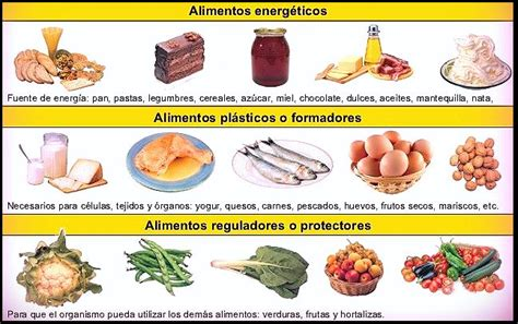 alimentos que no son nutritivos lista de comida nutritiva para ni 241 os fotos de alimentos
