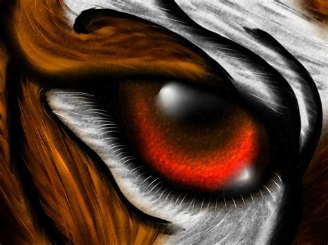 tigers eye tiger eye by amu23m1 on deviantart