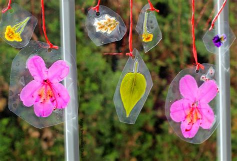 nature crafts crafts for diy nature suncatchers where