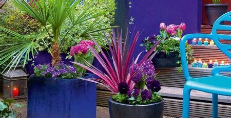composition d une jardini 232 re orientale toutes saisons conseils plantes vivaces et gramin 233 es truffaut