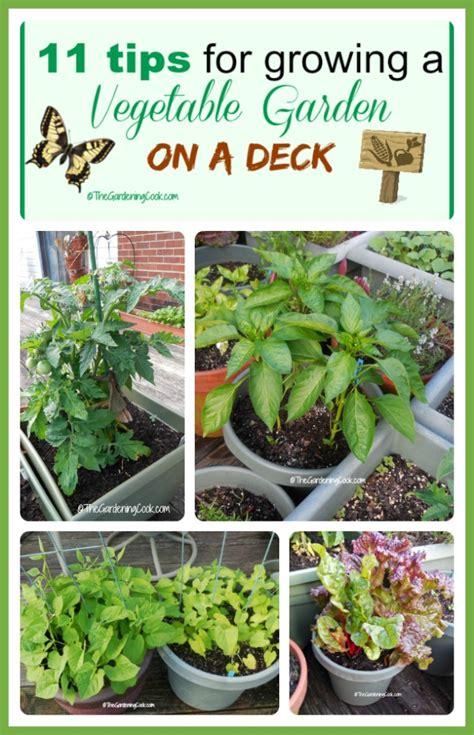tips for planting a vegetable garden 11 tips for growing a vegetable garden on a deck the