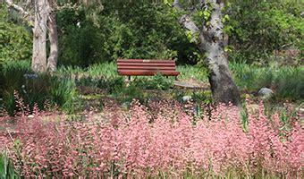 rancho santa botanic gardens rancho santa botanic garden in claremont ca