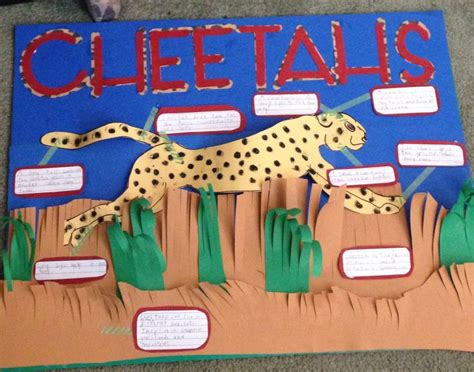 cheetah crafts for cheetah project poster school projects for primary