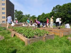 Garden Of Commune 10 Steps To Starting A Community Garden Halifax Garden