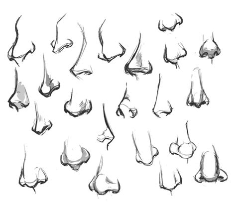 how to draw noses nose draw buscar con dibujillos