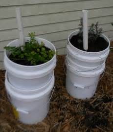 5 gallon planter self watering garden containers 5 gallon buckets upated