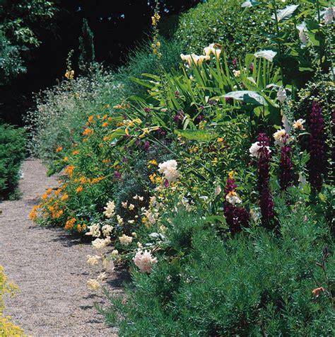 garden border plants flowers plant types border perennial flowers
