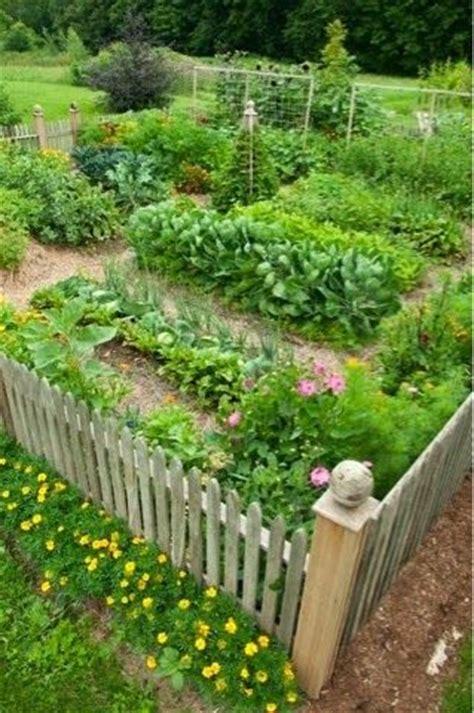 vegetable gardens best 25 vegetable garden design ideas on