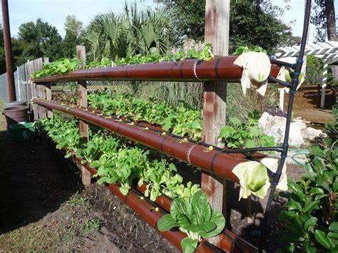 pvc garden ideas gardening in 4 quot pvc pipe