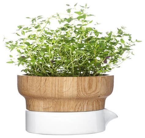 herb pot fix herb pot contemporary indoor pots and planters
