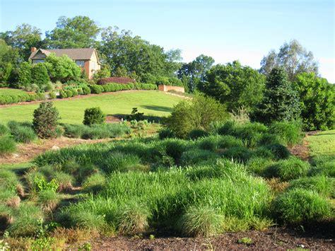 botanical gardens clemson sc south carolina botanical garden clemson sc 3 264