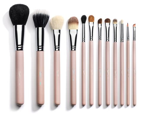 makeup brushes the puppy ate my makeup brushes jen nelson