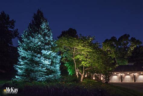 landscape lighting for trees landscape lighting trees
