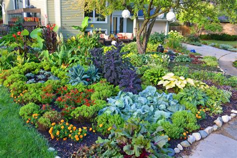 vegetable gardens 38 homes that turned their front lawns into beautiful