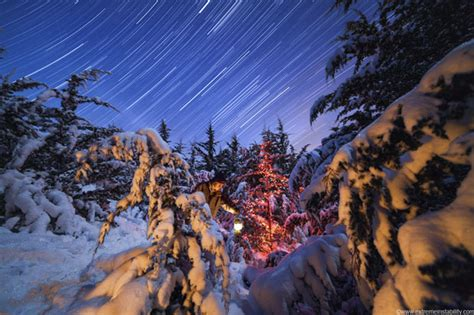 lights and snow lights the moon and snow covered trees