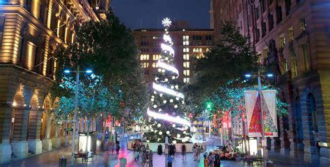martin place tree lighting sydney what s on city of sydney