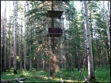 tree stand plans tree stand plans