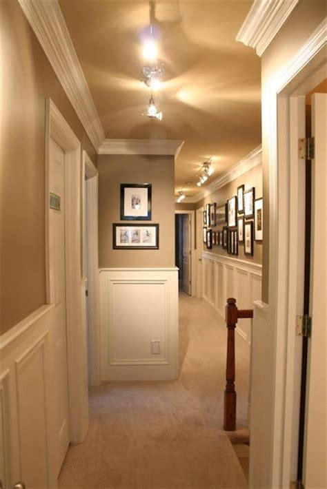 paint color for ceiling benjamin paint colors raccoon hollow on walls