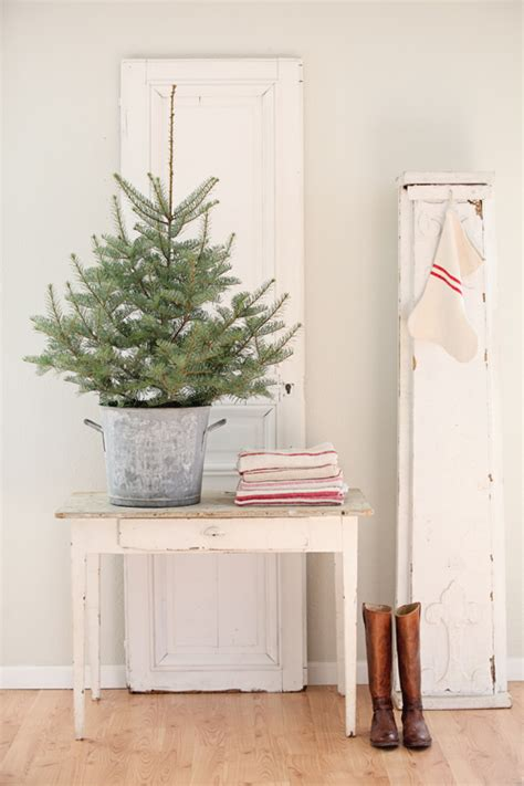 table top tree inspiration tabletop tree simply grove