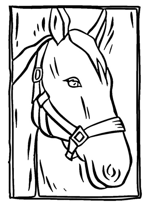 horse head coloring page purple kitty
