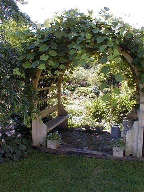 Garden Arch Vines 25 Unique Grape Arbor Ideas On Pergola Garden