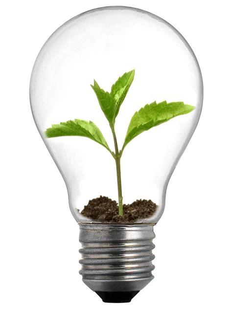 new range of light bulbs from bulbrite ecofriend