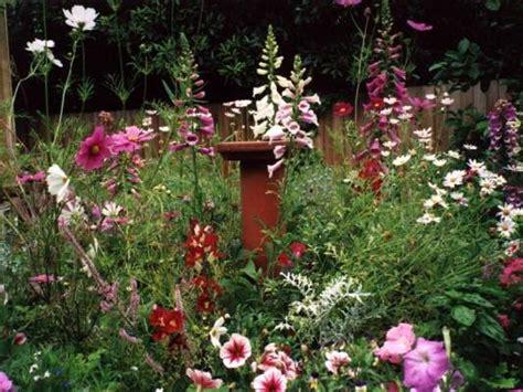 secret garden flowers secret flower garden