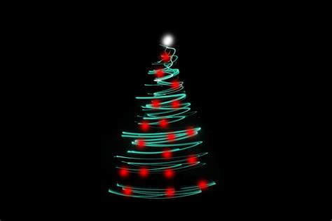 black light tree photo of tree light free images