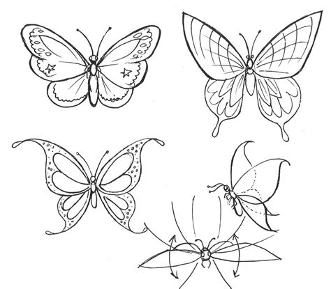 butterfly step by step how to draw a butterfly