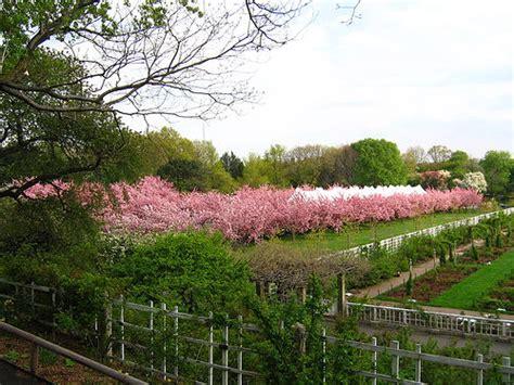 777 cherry tree rd 35680984 e9b23029f6 z jpg zz 1