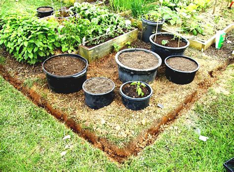 how to make home vegetable garden small vegetable garden design for small house guide