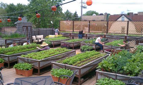 how to make home vegetable garden lawn garden house roof vegetable garden exquisite